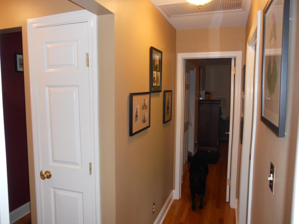 a freshly painted hallway in a home